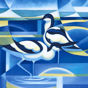 Avocets-TN