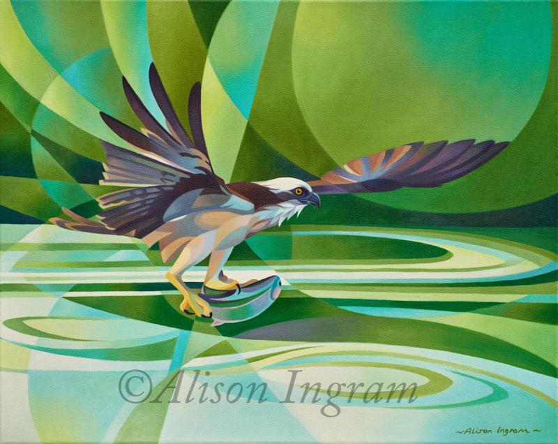 Osprey-fishing