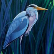 Grey-Heron-TN