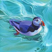 Swimming-Puffin-TN
