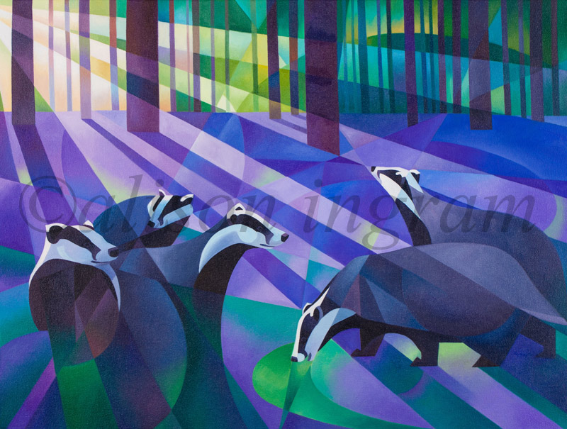 Badgers,-Bluebells-and-Moonlight